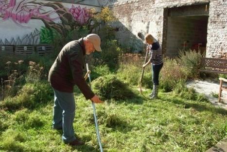 Une semaine de campagne | Les colocs du jardin | Scoop.it