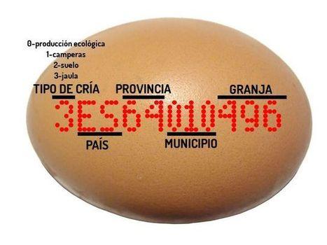 La cosa tiene huevos (El etiquetado de los huevos de gallina) - Cuídate Sano Blog | Cuídate Sano Blog | Scoop.it