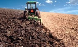 We're treating soil like dirt. It's a fatal mistake, because all human life depends on it | Lorraine's Sustainable Biomes (NSW) (including Food security) | Scoop.it