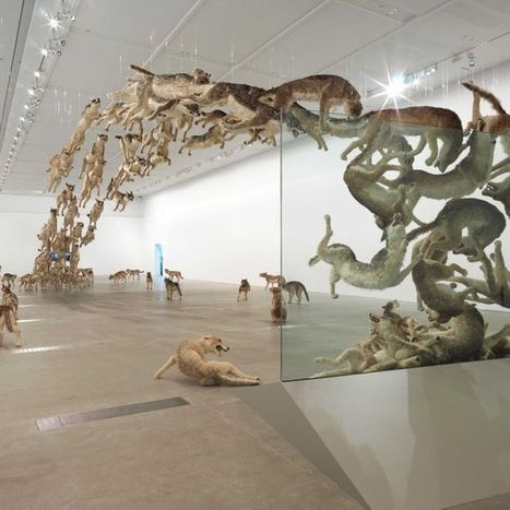 The Spectacular Art of Cai Guo-Qiang | ABC (Australie) | Kiosque du monde : Asie | Scoop.it