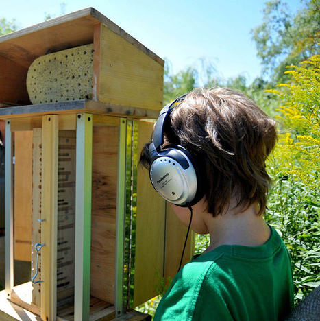 Audio Bee Booth, listening | DESARTSONNANTS - CRÉATION SONORE ET ENVIRONNEMENT - ENVIRONMENTAL SOUND ART - PAYSAGES ET ECOLOGIE SONORE | Scoop.it