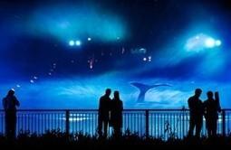 The Festival of Lights in Dubai City   News Update   Scoop.it