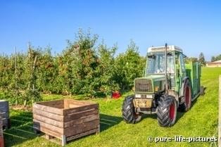 Boom des conversions en agriculture bio : les aides ne suivent pas | Attitude BIO | Scoop.it