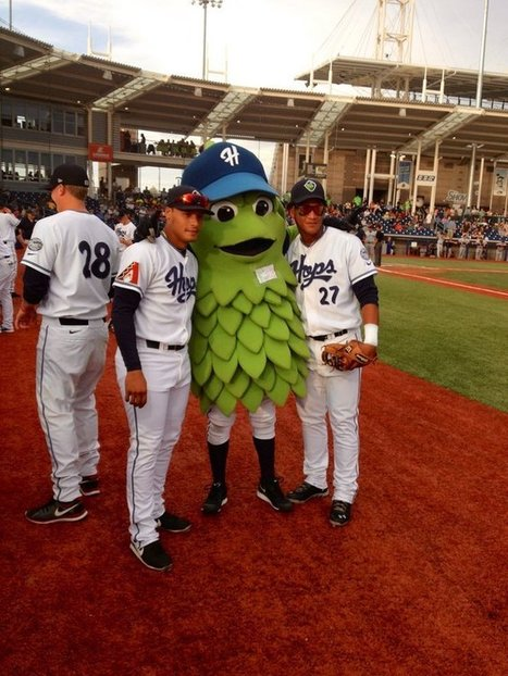 'Barley,' the Hillsboro Hops' mascot, is simply irresistible | New At Alinco | Scoop.it