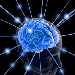 Brain Facts #7 – Your Brain Never Sleeps | ZOXPro Training | Scoop.it