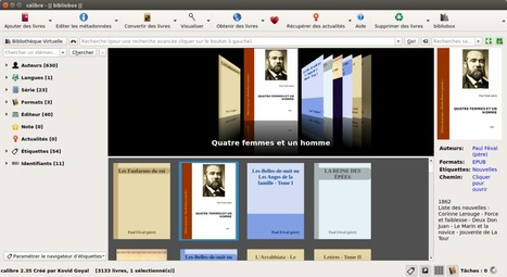 Comment mettre en place une bibliothèque numérique libre et gratuite ? | Technologies numériques & Education | Scoop.it