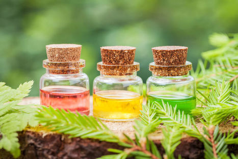 Pure Organic Essential Oils and Their Uses in Aromatherapy & Industries | Natures Natural India - Bulk Essential oils Manufacturer and Suppliers | Scoop.it