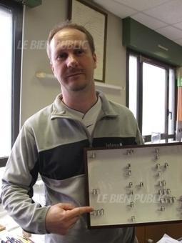 Un insecte découvert pour la première fois en France à Dijon   EntomoNews   Scoop.it
