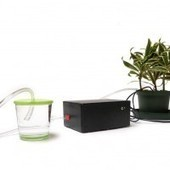 Arduino-powered plant can water itself, thank you very much | Arduino | Scoop.it