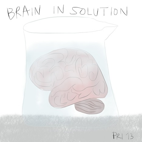 I Can See Clearly Now, the Brain is Gone : Visual Science   Science Data Vizualisation   Scoop.it