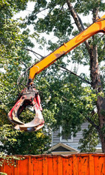 Get outstanding tree removal and trimming services by Any Tree Anywhere! | Any Tree Anywhere | Scoop.it