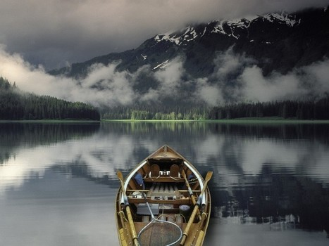 Ninth Circuit Ensures Protection of Roadless Areas in Alaska's Tongass National Forest | Introduce new course in schools called COMPASSION | Scoop.it