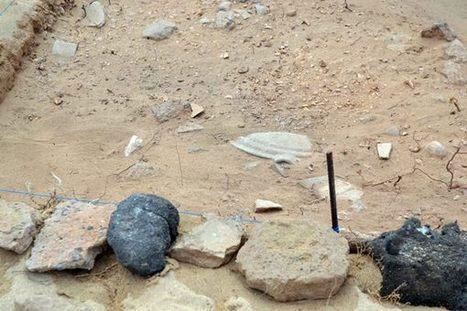 Se confirma el origen romano del yacimiento de Isla de Lobos (Fuerteventura) y su excavación se prolongará los próximos tres años | Historia y Geografia | Scoop.it