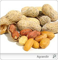 Arachide | Les aliments et leurs vertus | Scoop.it