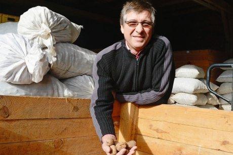 La noix sur de bons rails | Agriculture en Dordogne | Scoop.it