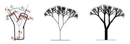 Leonardo da Vinci's tree rule may be explained by wind | Dave Sellers, Iconoclast Architect , GroupThink about the {non-gadgety} house, home, neighborhood, culture, and sustainable living situation for the future. IDEAS WELCOME, INVITED, ENCOURAGED, and MUCH APPRECIATED! | Scoop.it