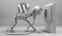 3 Content Curation Plugins for Wordpress - Think Big Online Marketing | Curaduria de contenidos y Preservacion digital | Scoop.it