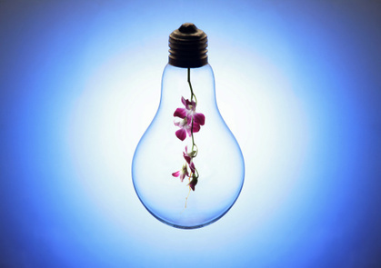 The Potency of An Idea And The Functionality of the Mind (2)   Meta-Psychology Of Business   Scoop.it