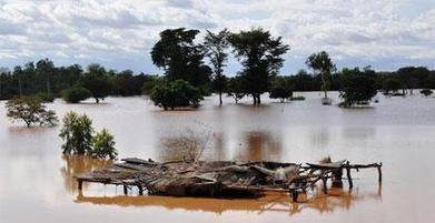 Un demi million de personnes sinistrées au Niger suite aux pires inondations depuis plus de 80 ans | Questions de développement ... | Scoop.it