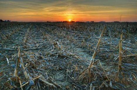 Warming climate may spread drying to a third of Earth, says study | Sustain Our Earth | Scoop.it