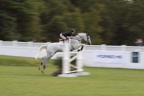 Horse Health News Capsule:  2013 Hampton Classic Horse Show Upgraded EHV Prevention Requirements | The Jurga Report: Horse Health, Welfare, and Care | Scoop.it