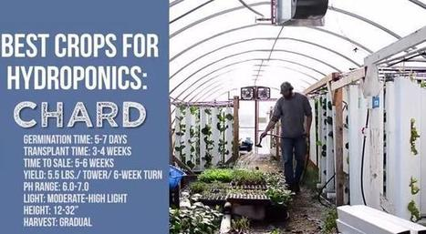 Upstart Farmers Round Table: CO2 and a New YouTube Series. | Vertical Farm - Food Factory | Scoop.it
