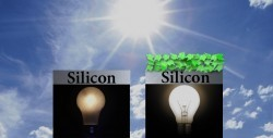 Biohybrid: Scientists have combined a spinach photosynthetic protein with silicon technology | Bioslogos | Scoop.it