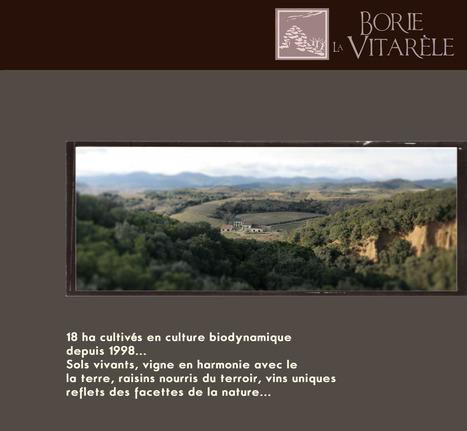 Borie la Vitarèle Saint-Chinian vin du Languedoc   Vins nature, Vin de plaisir   Scoop.it