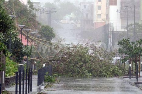 Cyclone Bejisa causes damaged South of Reunion Island | Coup d'œil sur La Réunion | Scoop.it