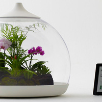 Now you can control plants with your iPhone | mlearn | Scoop.it