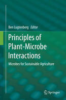 Plant Hormones Produced by Microbes - Springer | My publications | Scoop.it