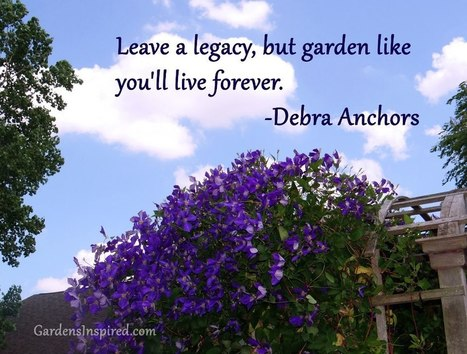 Garden quotes | Gardening Life | Scoop.it