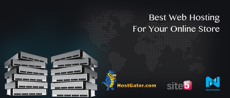 Best Web Hosting For Your Online Store | Ecommerce Website Development Services | Scoop.it