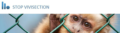 Stop Vivisection! | STOP VIVISECTION | Scoop.it