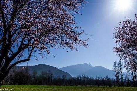 Twitter / LoicBel: Allez le printemps reviendra, ... | Le Volvestre | Scoop.it