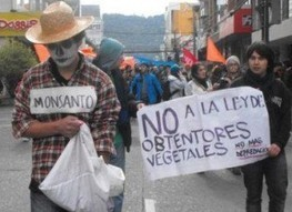 Mexican Farmers Take On Monsanto - ForceChange | Food issues | Scoop.it