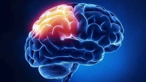 Thicker brain sections tied to spirituality, study finds | John Duffy's Personal Empowerment | Scoop.it