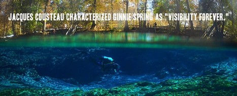 Enjoy with River Tubing and Diving at Ginnie Springs Outdoors   Bookmarking   Scoop.it