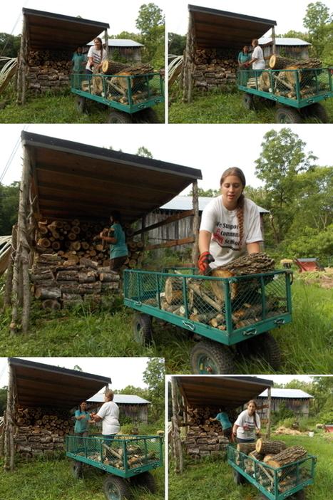 Walden Effect: Homesteading and Simple Living Blog   Vegetable gardening   Scoop.it
