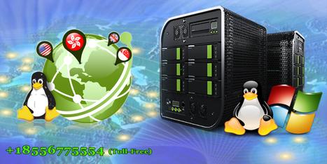 Dedicated Server India, Managed Dedicated Servers - Onlive Server | Onlive Infotech | Scoop.it