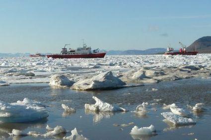 Le cercle arctique menacé par l'invasion d'espèces exotiques   Serendipitic   Scoop.it