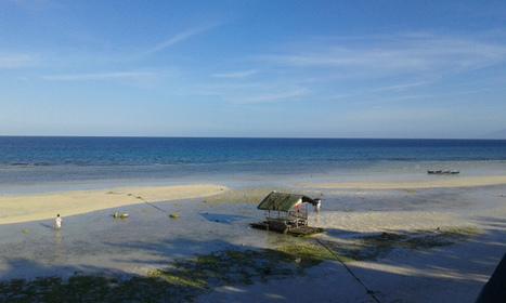 Anda - Bohol's Next Destination - Everywhere with Ferna   Travel Buzz   Scoop.it
