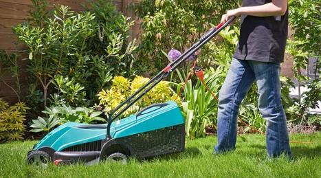 En Finlande, le facteur va tondre la pelouse !   Les Postes et la technologie   Scoop.it
