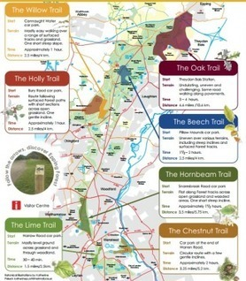 Walks And Walking - Way Marked Trails in Epping Forest | Walks And Walking | Scoop.it