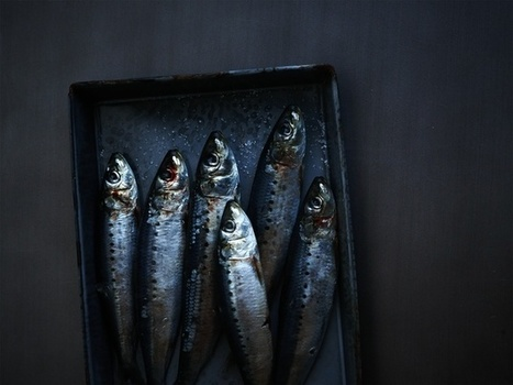 Food Photography by Iain Bagwell | @FoodMeditations Time | Scoop.it