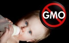 3 Companies Using GMOs in Baby Formula | Let the EARTH provide! | Scoop.it