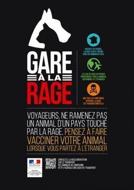 Campagne de sensibilisation contre la rage avant les vacances | Buzz e-sante | Scoop.it