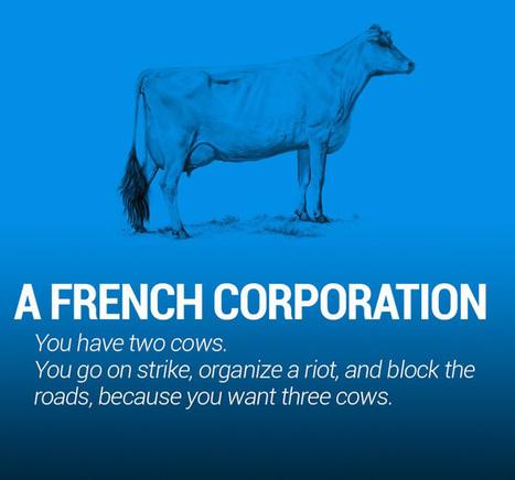 Two Cows Explain Economics Better Than Any Class   Organic Pathos   Scoop.it