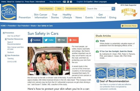 Lansing, MI Window Tinting Firms Help Prevent Skin Cancer in Motorists | Design Rides | Scoop.it