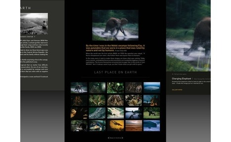National Geographic photographer ditches website, turns to the iPad - British Journal of Photography | Fotografía | Scoop.it